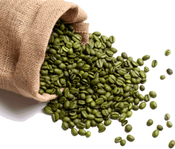 how long do green coffee beans stay fresh